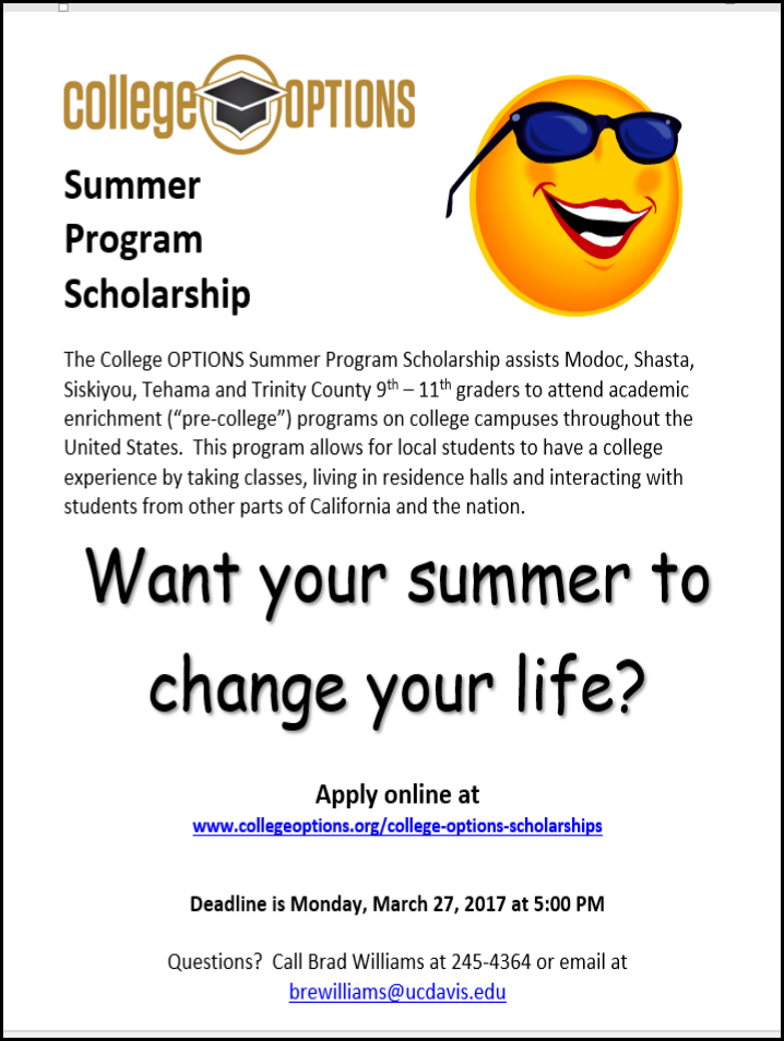 image summerScholarship Flyer.png