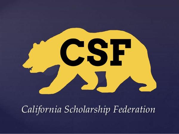 Image result for csf sealbearer